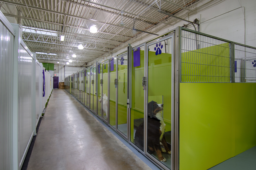 Front Row of Kennels